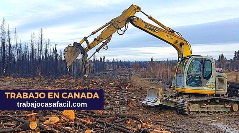 【Trabajo en CANADA】Se busca operadores de máquinarias
